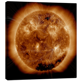 Canvas print  Magnetic field lines on the Sun - Stocktrek Images