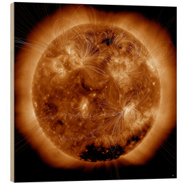 Wood print  Magnetic field lines on the Sun - Stocktrek Images