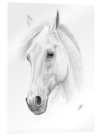Acrylic glass  Horse drawing - Christian Klute