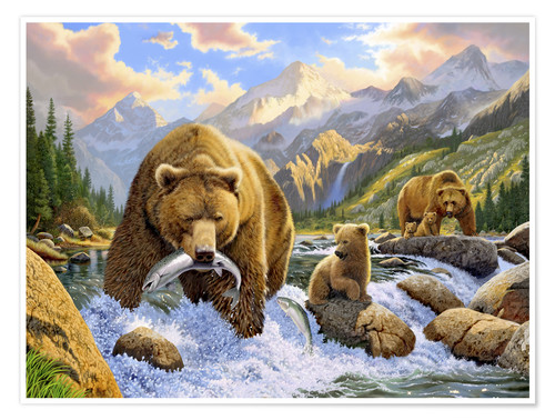 Premium poster Bear fishes salmon