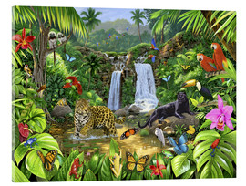 Acrylic print  Rainforest harmony - Chris Hiett