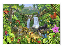Premium poster  Rainforest harmony - Chris Hiett