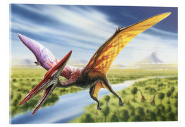 Acrylic glass  Pterodactyl - Adrian Chesterman