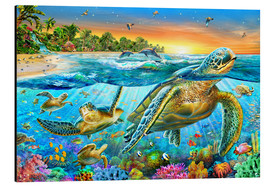 Aluminium print  Underwater turtles - Adrian Chesterman