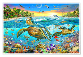 Poster  Turtle Cove - Adrian Chesterman