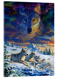 Acrylic print  Moonlight Wolfpack - Adrian Chesterman