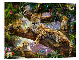 Acrylic print  Tree Top Leopard Family - Jan Patrik Krasny