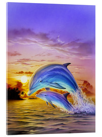Acrylic glass  Sunset dolphins - Robin Koni
