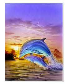 Poster  Sunset dolphins - Robin Koni