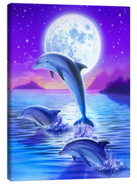 Canvas  Day of the dolphin - midnight - Robin Koni
