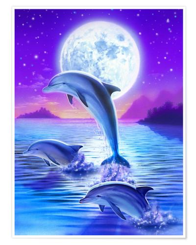 Premium poster Dolphins at midnight