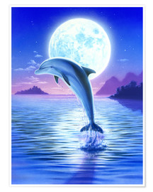 Premium poster Day of the dolphin - midnight