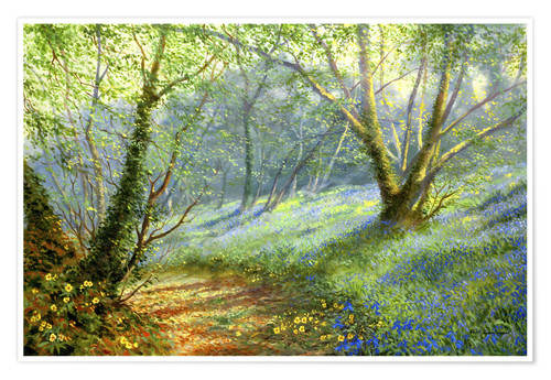 Poster Hazel and bluebells