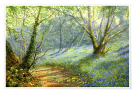 Premium poster Hazel and bluebells