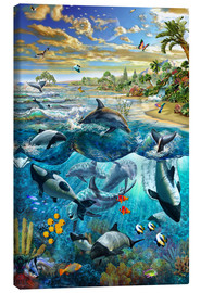 Canvas print  Dolphin beach - Adrian Chesterman