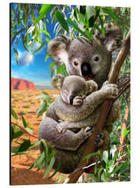 Aluminium print  Koala and cub - Adrian Chesterman