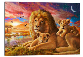 Alu-Dibond  Lion Sunrise - Adrian Chesterman