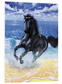 Forex  Black stallion - Chris Hiett