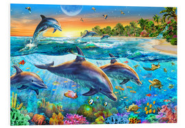 Foam board print  Dolphin bay - Adrian Chesterman