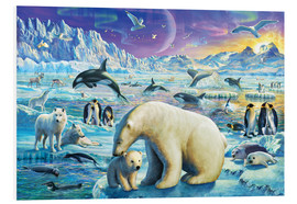 Foam board print  Arctic Night - Adrian Chesterman