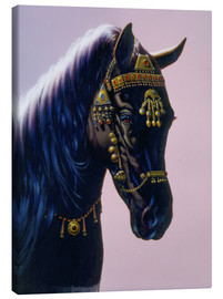 Canvas  Arab horse - Chris Hiett