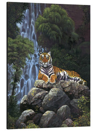 Aluminium print  Tiger waterfall - Chris Hiett