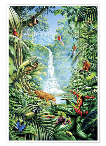 Premium poster Save the rainforest