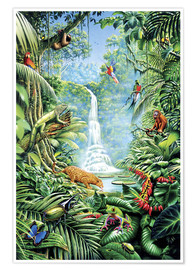 Premium poster  Save the rainforest - Gareth Williams