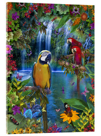 Acrylic print  Bird Tropical Land - Alixandra Mullins