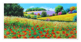 Premium poster Flower meadow in the province