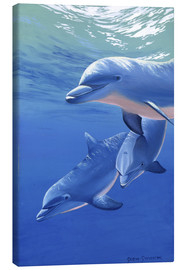 Canvas  Happy dolphins - Graeme Stevenson