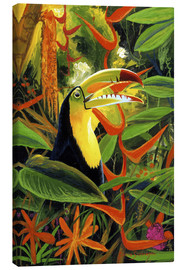Canvas print  Toucan colours - Graeme Stevenson