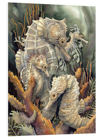 Foam board print  Seahorses, beyond imagination - Jody Bergsma