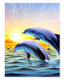 Poster  Dolphin duo - Robin Koni