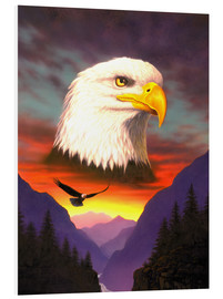 Forex  Eagle - Chris Hiett