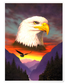 Premium poster  Eagle - Chris Hiett