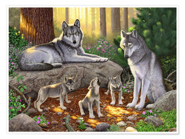 Poster  A family of wolves - Chris Hiett