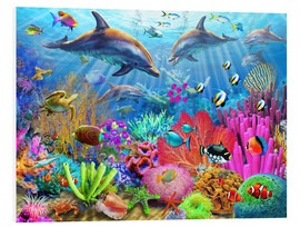 Foam board print  Dolphin coral reef - Adrian Chesterman
