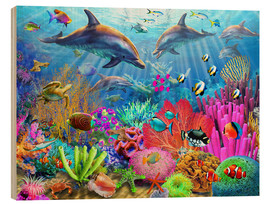 Wood  Dolphin Coral Reef - Adrian Chesterman