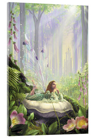 Acrylic print  Wood fairy - Garry Walton