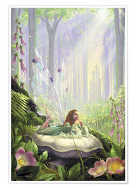 Premium poster  Wood fairy - Garry Walton