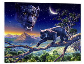 Acrylic glass  Twilight panther - Adrian Chesterman
