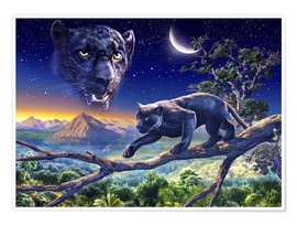 Premium poster  Twilight panther - Adrian Chesterman