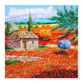 Poster  Among the Poppies - Jean-Marc Janiaczyk
