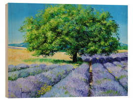 Wood  Tree and Lavenders - Jean-Marc Janiaczyk