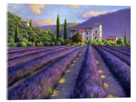 Acrylic glass  Lavender field with Abbey - Jay Hurst