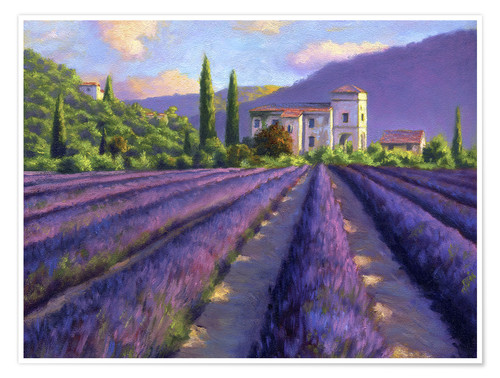 Premium poster Lavender field with Abbey