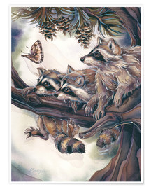 Premium poster  Raccoons and butterfly - Jody Bergsma