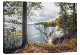 Canvas print  Kollicker shore (National Park Jasmund / Ruegen) - Dirk Wiemer