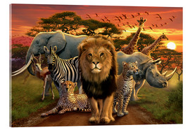 Acrylic print  African beasts - Andrew Farley